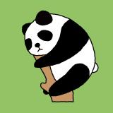 チャーミングなパンダアイコン